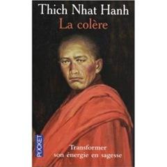la-colere-thich-nhath-hanh