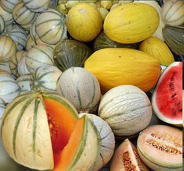 melons-varies