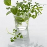 herbes-et-reflets