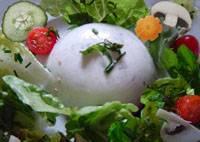 Flan agar-agar concombre et chèvre sur lit de crudités